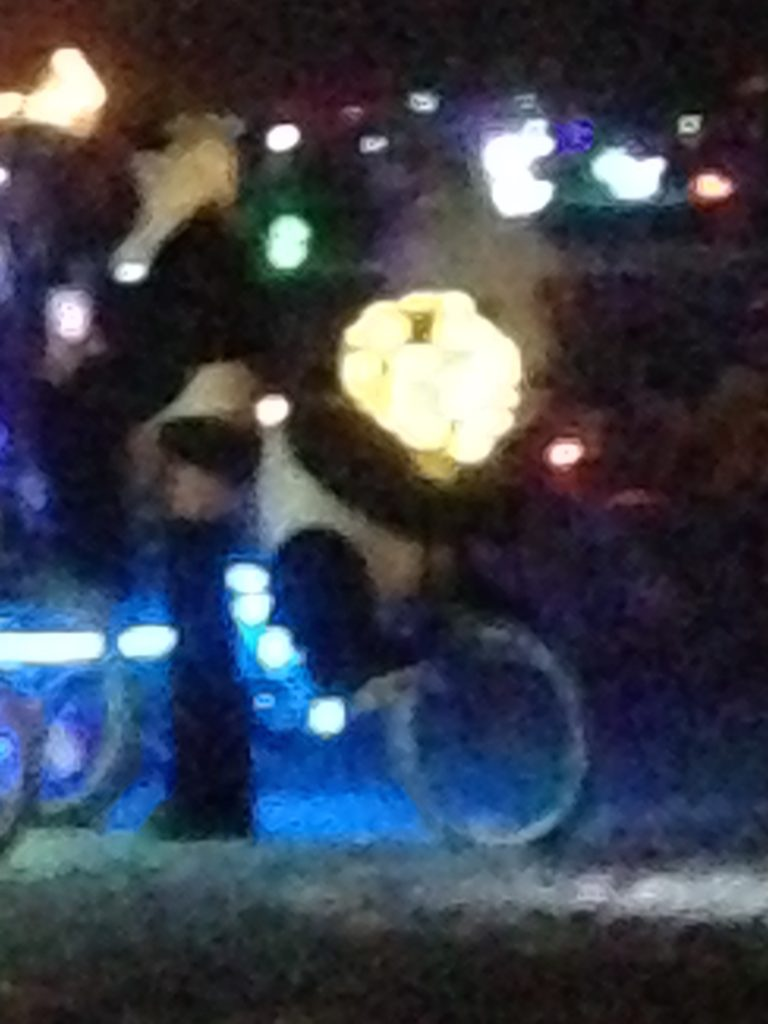 Ceci n'est pas une panda au bicyclette panda.