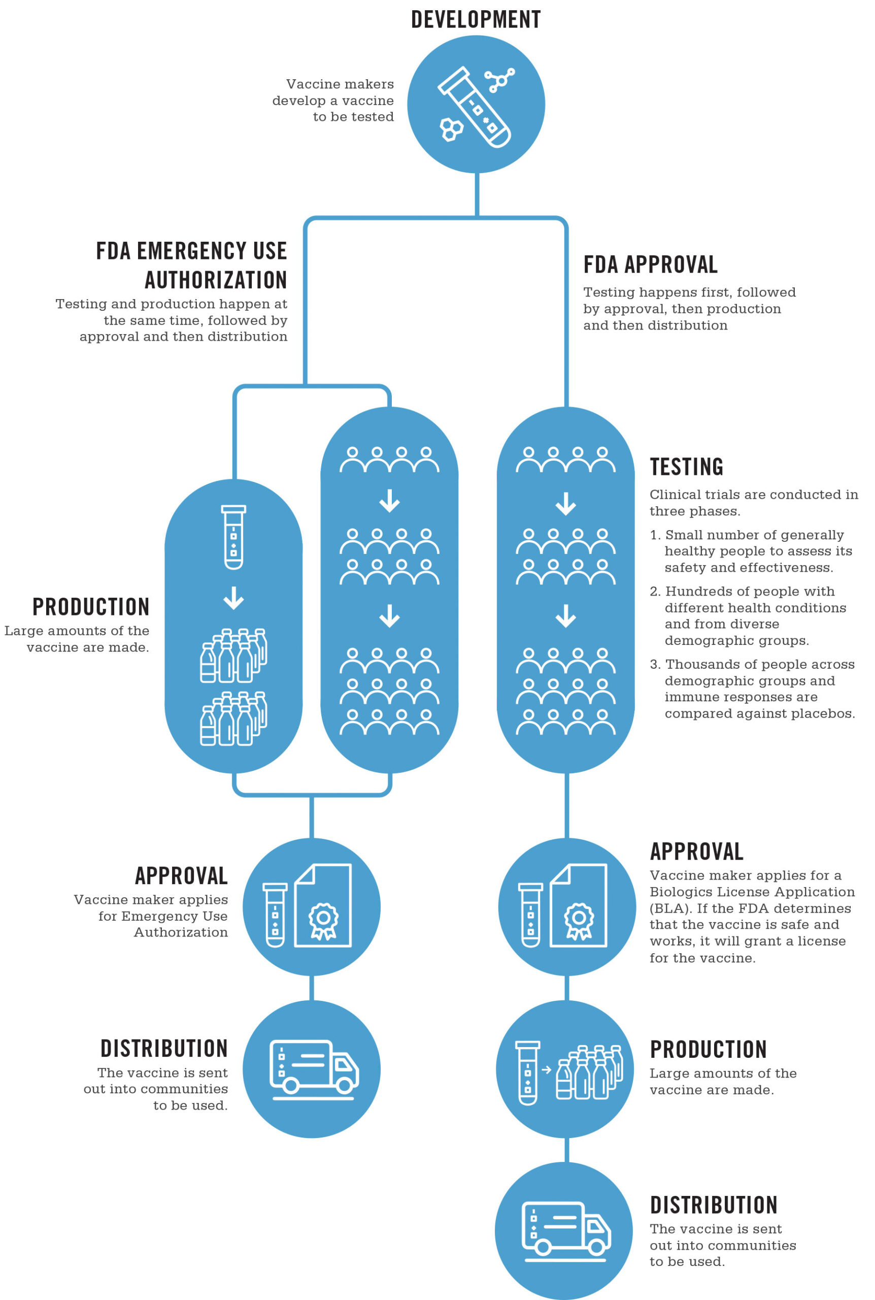 Infographic from UNC Healthcare showing the FDA vaccine approval process, and how it differs under an 'Emergency Use Authorization'
